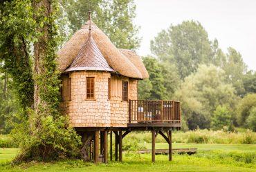 Самые необычные дома на деревьях